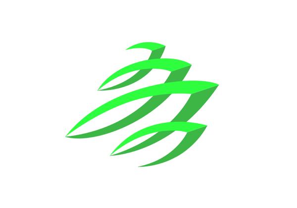 """作       者: 孙为超     作品说明: logo以青岛标志""""五月的风""""为"""